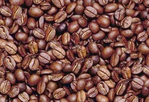 coffee bean man