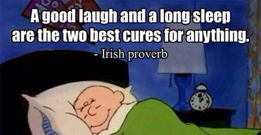 A good laugh and good sleep poster - irish proverb