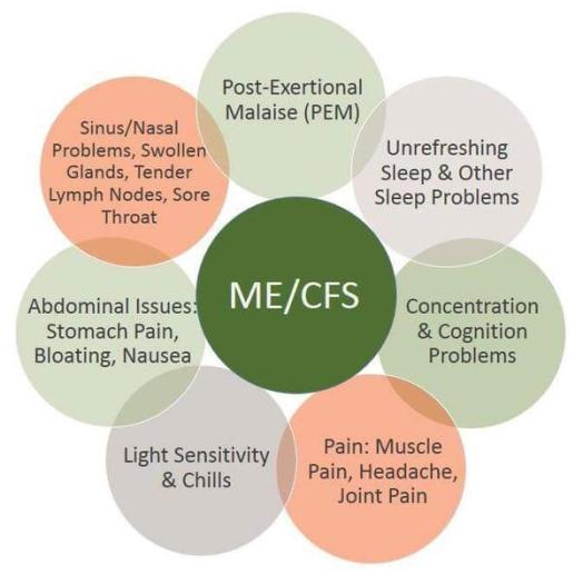 ME CFS DIAGRAM