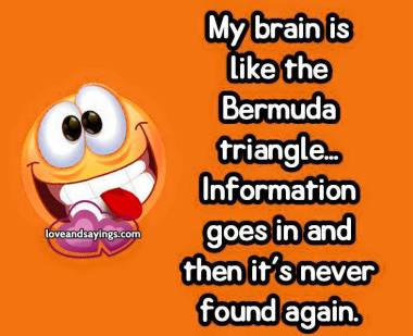 My brain is like the Bermuda Triangle...