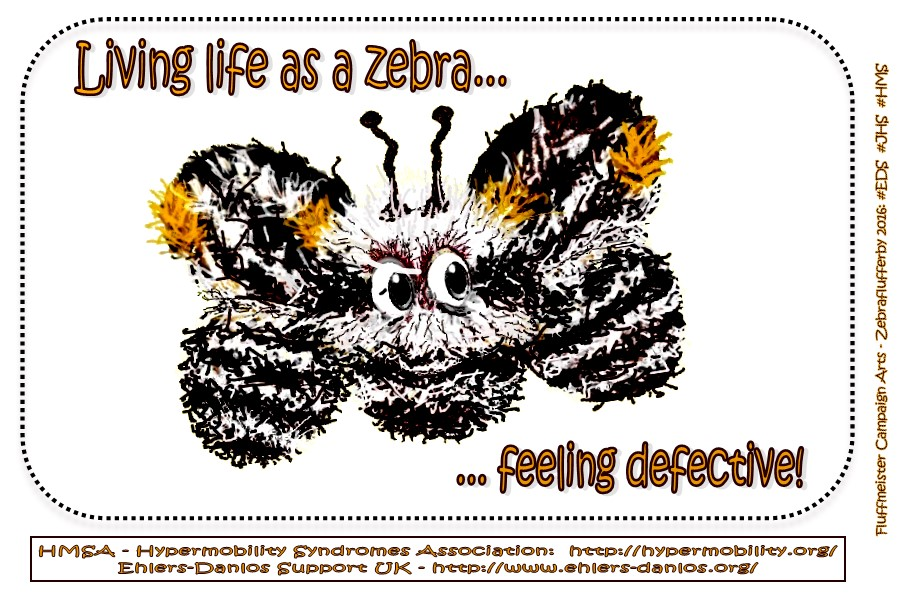 living-life-as-a-zebra-feeling-defective